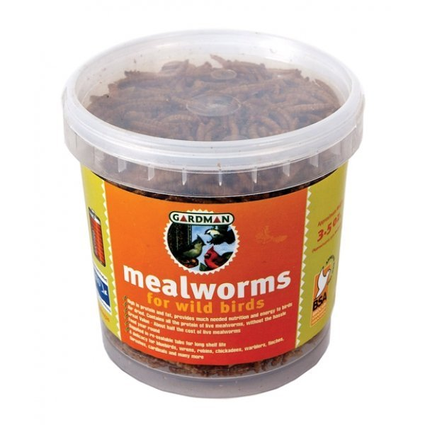 Mealworm Tub Wild Bird Food / Size (3.5 oz.) Best Price