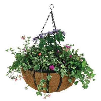 Forge Hanging Basket with Coco Liner / Size (14 in.) Best Price