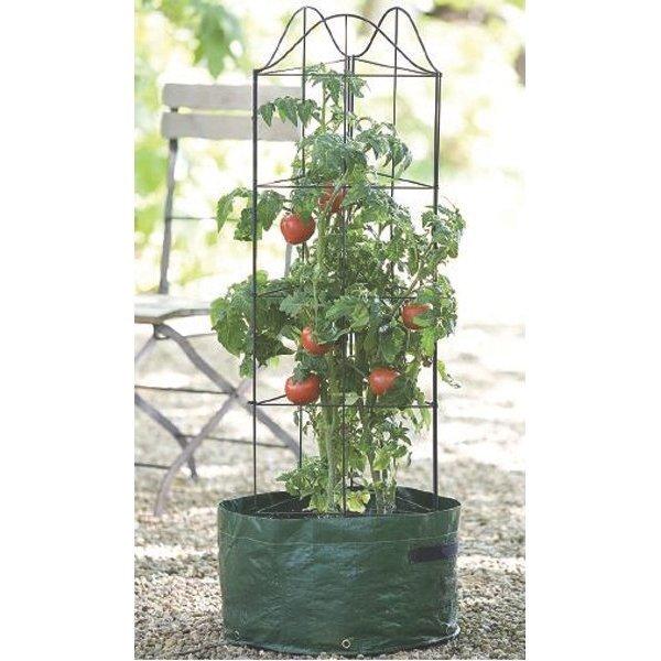 Climbing Tomato Planter - 4 ft.