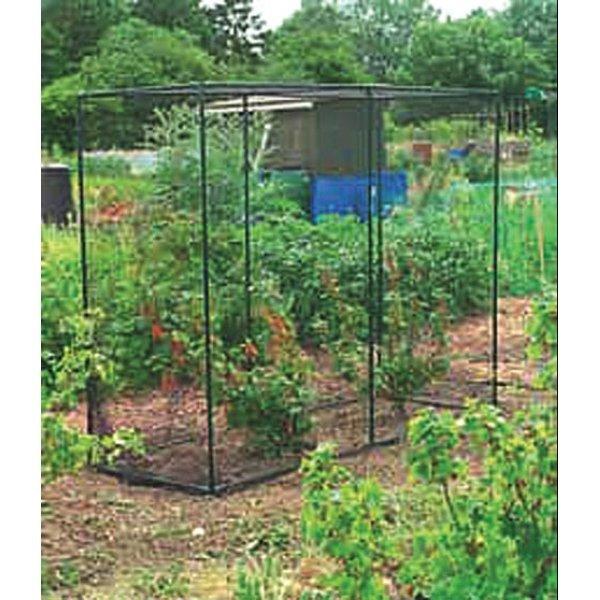Fruit Cage - Black / Medium Best Price