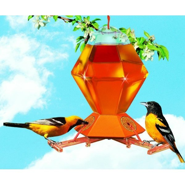 Deluxe Oriole Feeder with Perch Activated Bee Guard Best Price