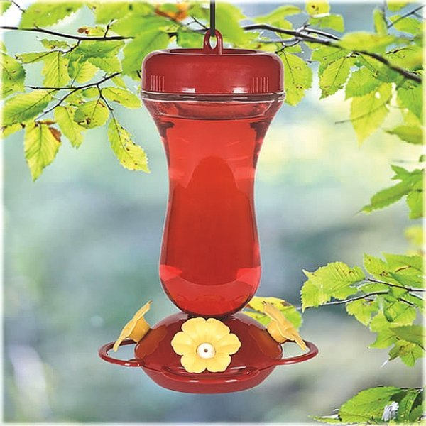 Red Glass Top Fill Hummingbird Feeder - 16 oz. Best Price