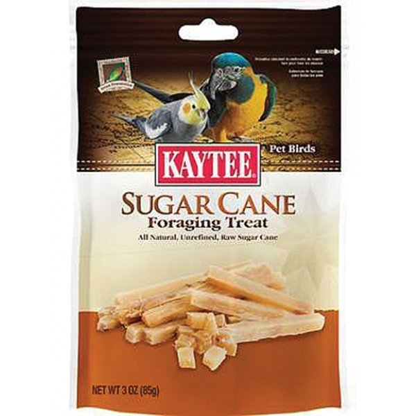 Sugar Cane Foraging Treat - Pet Birds - 3 oz. Best Price