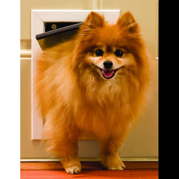 Freedom Metal Dog Door / Size (Small) Best Price