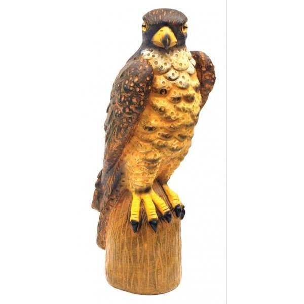 Garden Defense Falcon Best Price