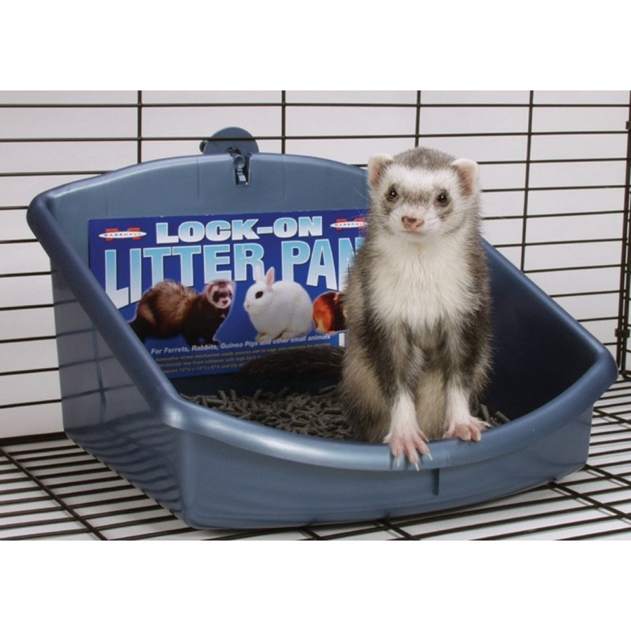 Ferret Lock On Litter Pan