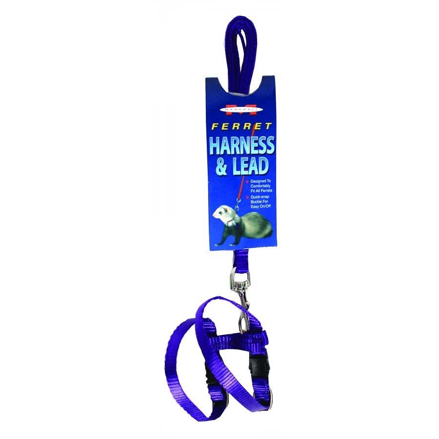 Ferret Harness Lead Purple