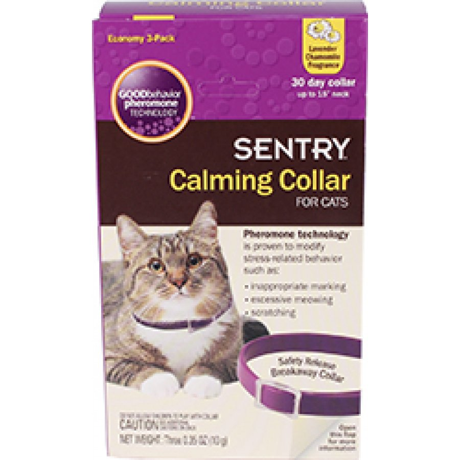 Best Calming Collar For Cats