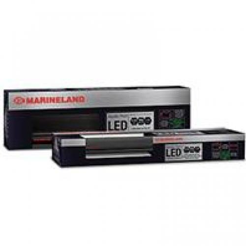 Aquatic Plant Led Lighting System / Size 24 36 In.