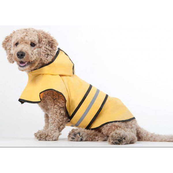Rainy Days Dog Slicker / Size (Xsmall) Best Price