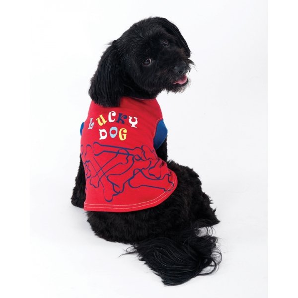 Lucky Dog Tee / Size (Large) Best Price