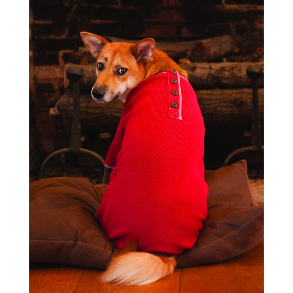 Warm & Toasty Dog Pajamas / Size (Large / Red)