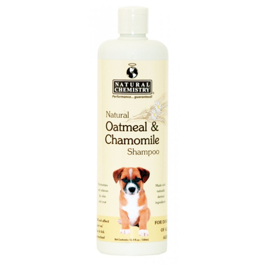 How To Make Oatmeal Baking Soda Dog Shampoo