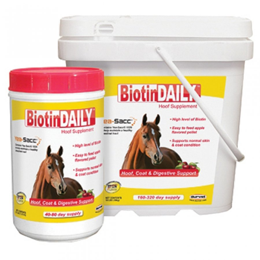 Biotindaily Hoof Supplement - 10 lbs Best Price