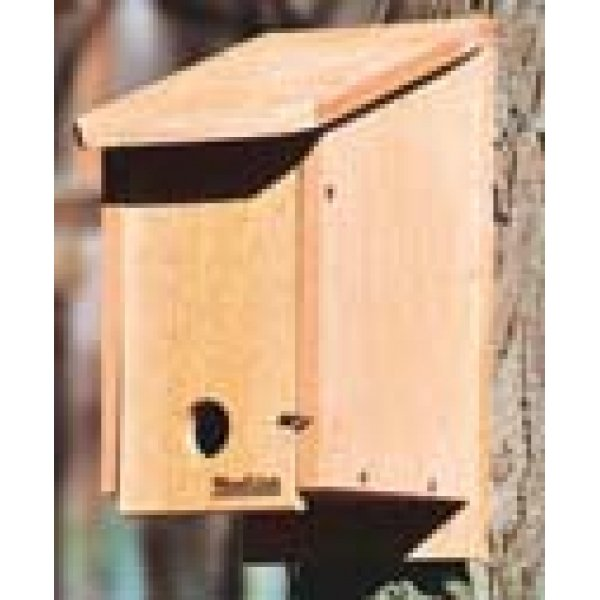 Cedar Winter Roosting Box Best Price