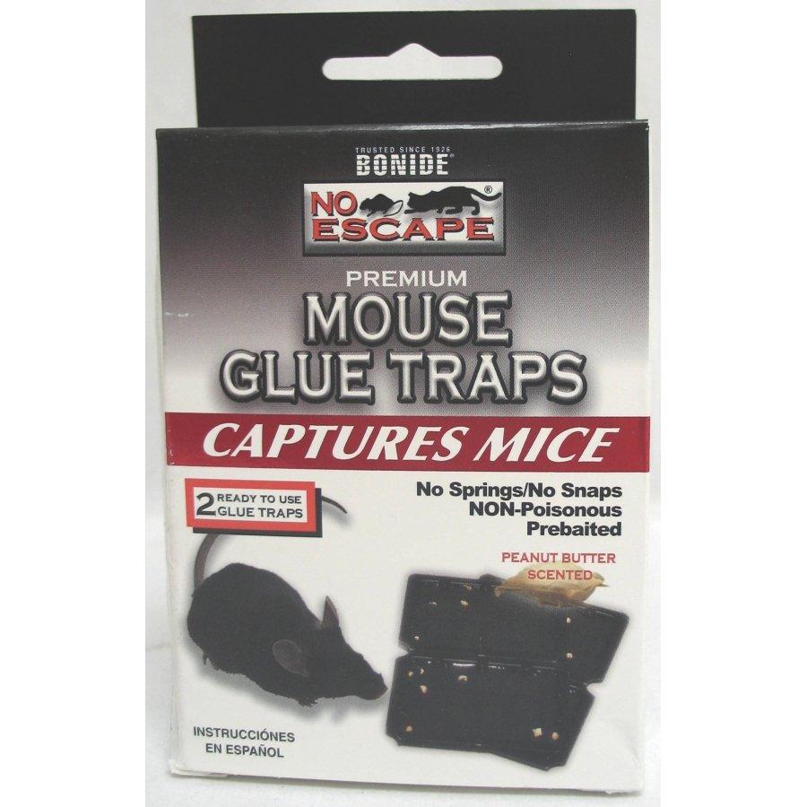 No Escape Mouse Glue Traps 2 pk Best Price