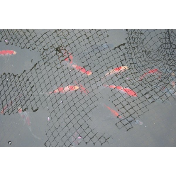 Laguna Black Protective Pond Netting / Size 15 X 20 Ft.