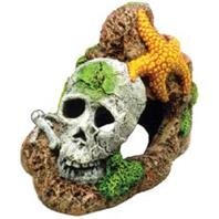 Skull with Starfish Aquarium Decoration Best Price