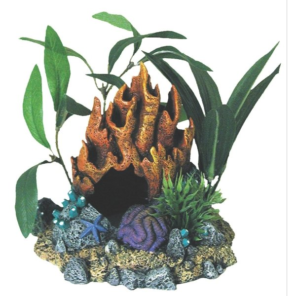 Fire Coral Cave With Plants Best Price