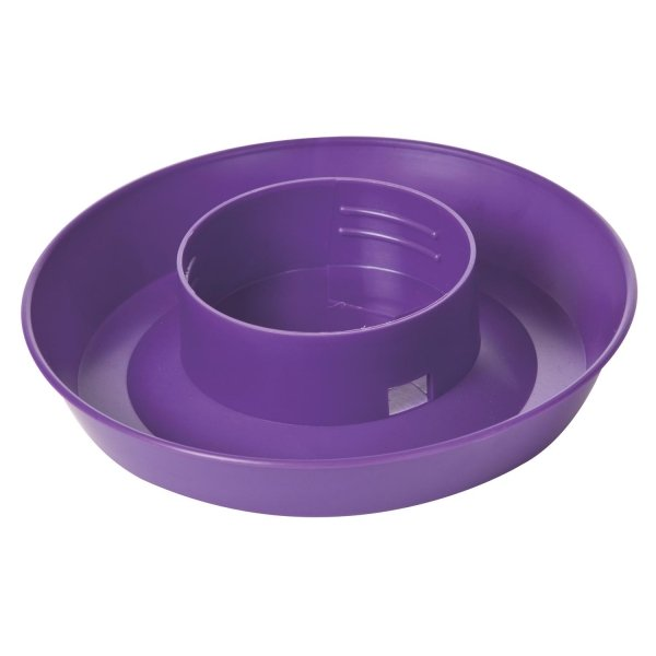 Poultry Screw on Jar Base - 1 Qt. / Color (Purple) Best Price