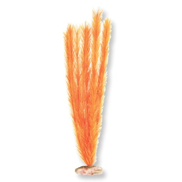Soft Aquarium Foxtail / Size (Medium Orange) Best Price