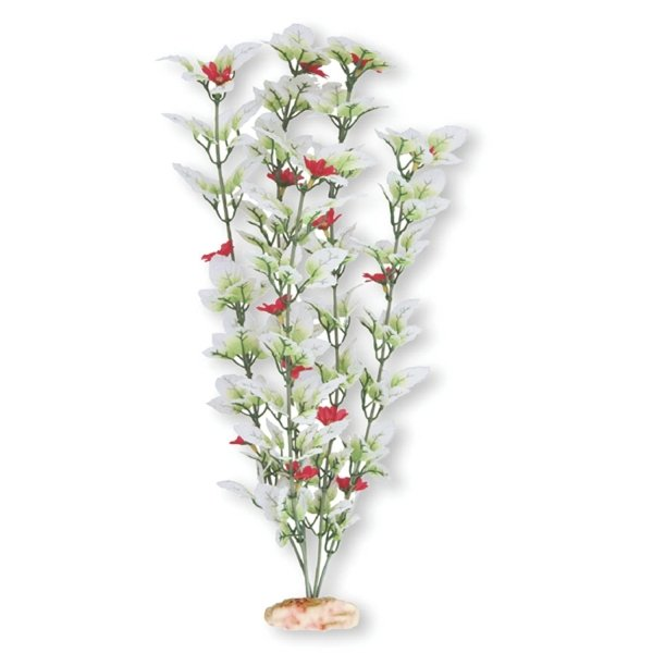 Flowering Melon Leaf Aquarium Ornament - Medium Best Price