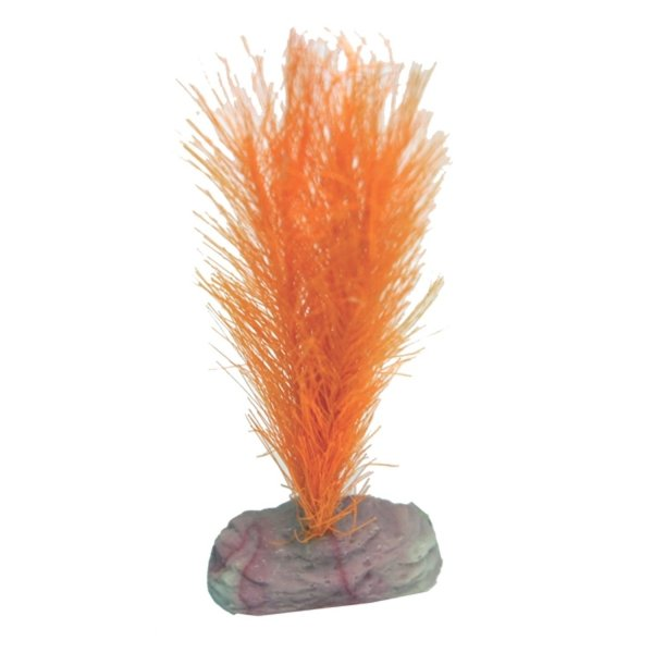 Soft Aquarium Foxtail / Size (Mini Orange) Best Price