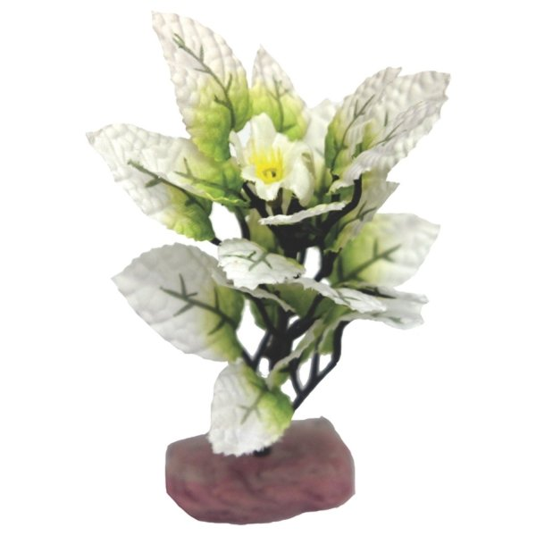 Flowering Melon Leaf Aquarium Ornament - Mini Best Price