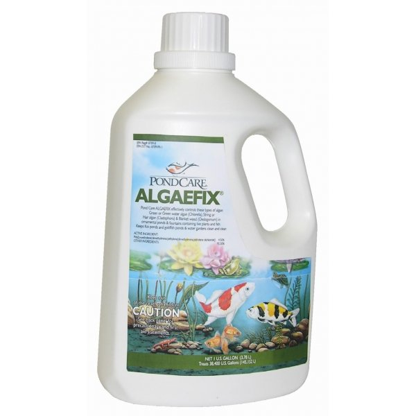 Algae Fix For Ponds / Size 1 Gallon