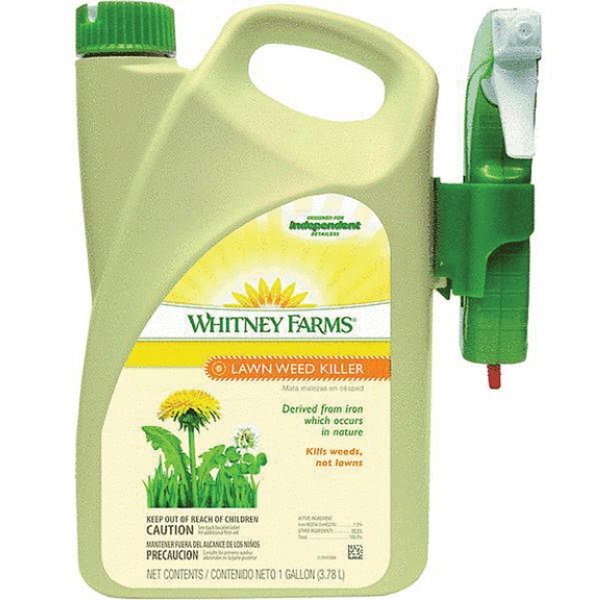 Whitney Farms Lawn Weed Killer Rtu (Case of 4) Best Price