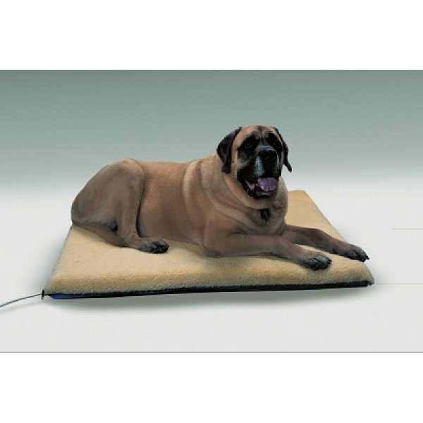 Ortho Thermo Bed Heated/orthopedic Dog Bed / Size Xlarge