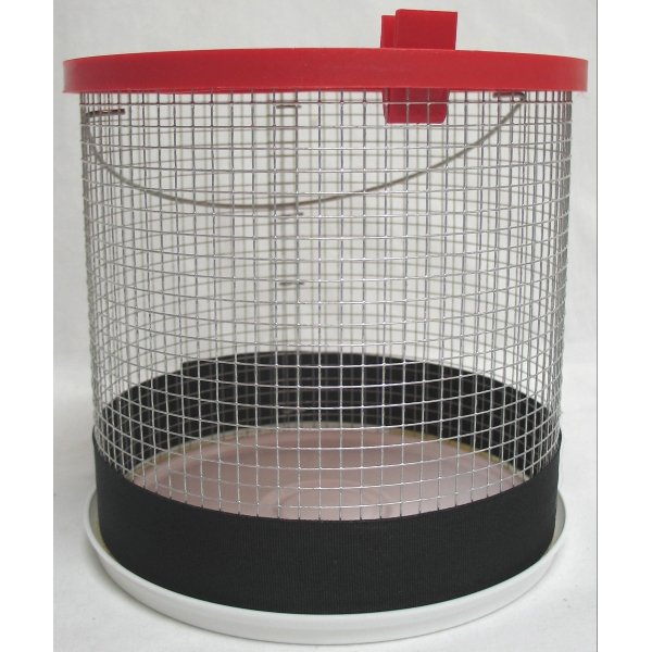 Hermit Crab Wire Cage / Size (8 x 8 in.) Best Price