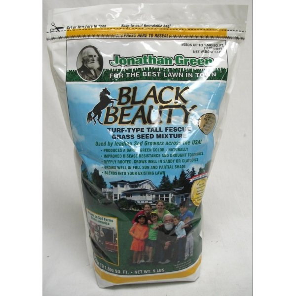 Black Beauty Grass Seed / Size (5 lbs.) Best Price