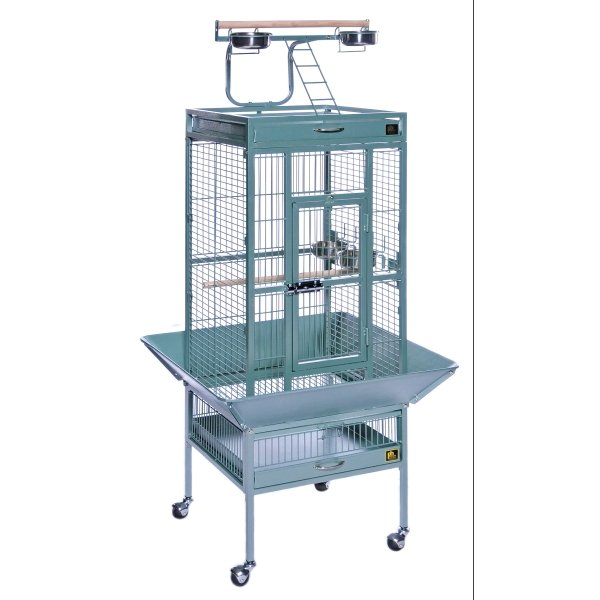 Cockatiel Cage w/ Play Top 18x18x57 in. / Color (Metallic Sage) Best Price