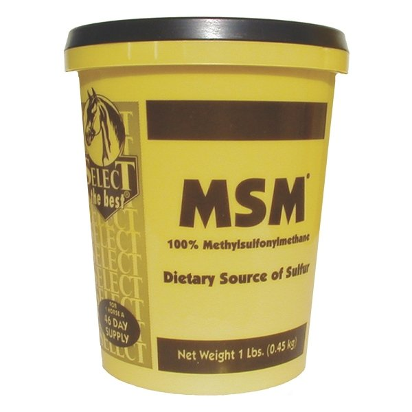 Select MSM for Horses / Size (1 lb) Best Price