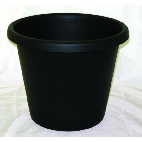 Classic Flower Pot / Size (12 in / Evergreen) Best Price