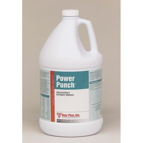 Cattle Power Punch / Size (Gallon) Best Price