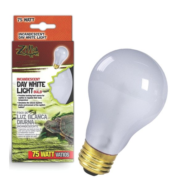 Reptile Incandescent Bulb / Size (White 75 Watt) Best Price