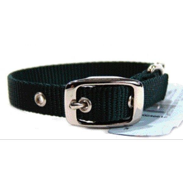 Nylon Dog Collar W/ Tongue Buckle / Size 5/8 X 14 In. / Hunter