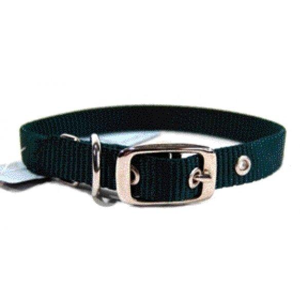 Nylon Dog Collar W/ Tongue Buckle / Size 5/8 X 16 In. / Hunter