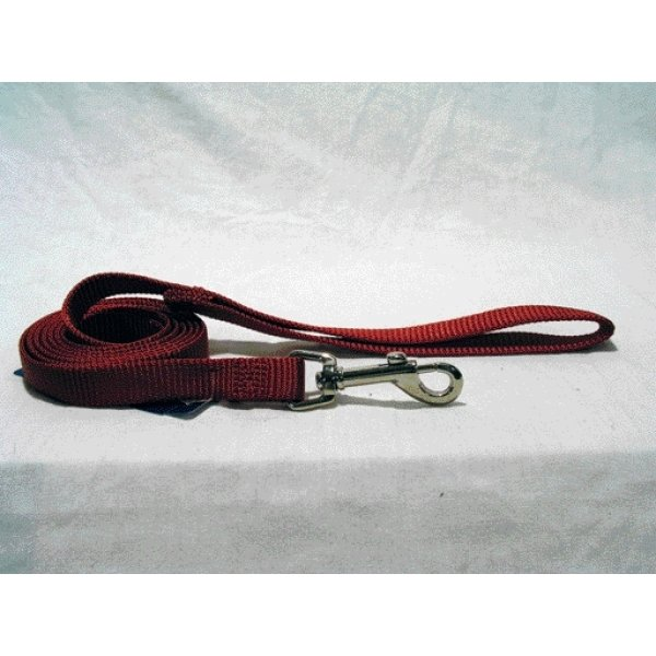 Nylon 5/8 In Thick Dog Leash / Size Red / 4 Ft
