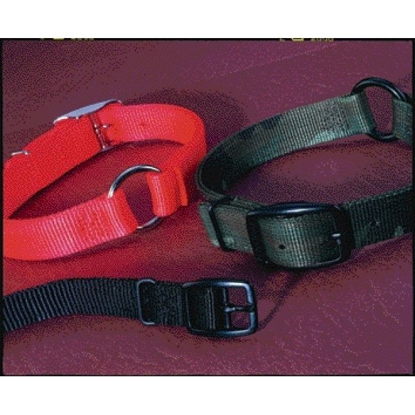 Safe Rite Sporting Dog Collar / Size 26 In.
