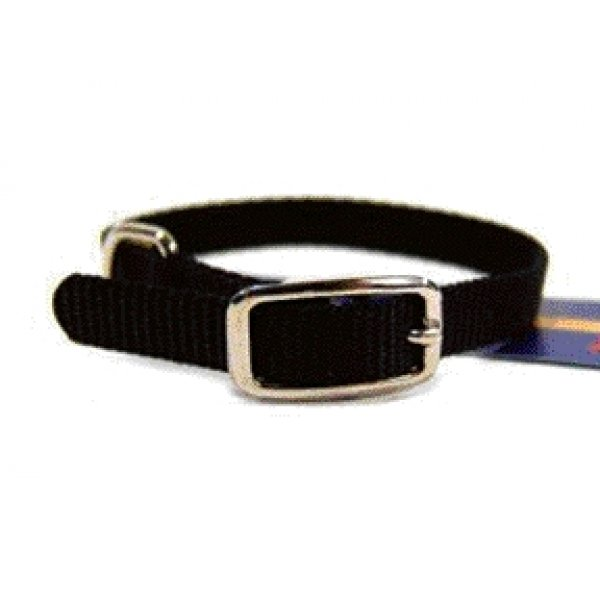 Small Dog Nylon Dog Collar / Size Black / 10 In.