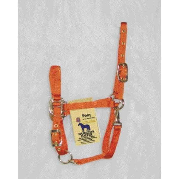 Adj. Pony Halter w/Snap / Color (Mango) Best Price