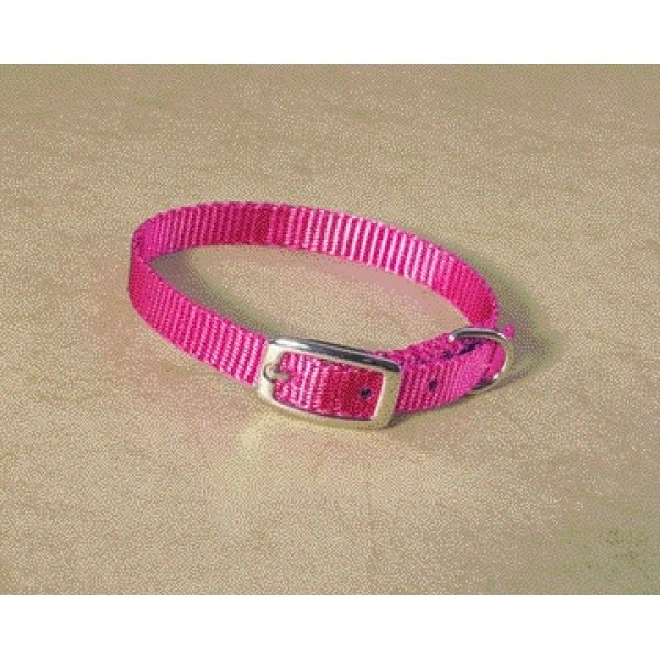 Small Dog Nylon Dog Collar / Size (Hot Pink / 10 in.) Best Price