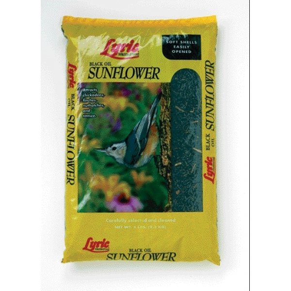 Lyric Black Oil Sunflower Bird Food / Size (25 lbs.) Best Price