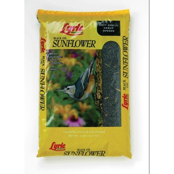 Lyric Black Oil Sunflower Bird Food / Size (50 lbs.) Best Price