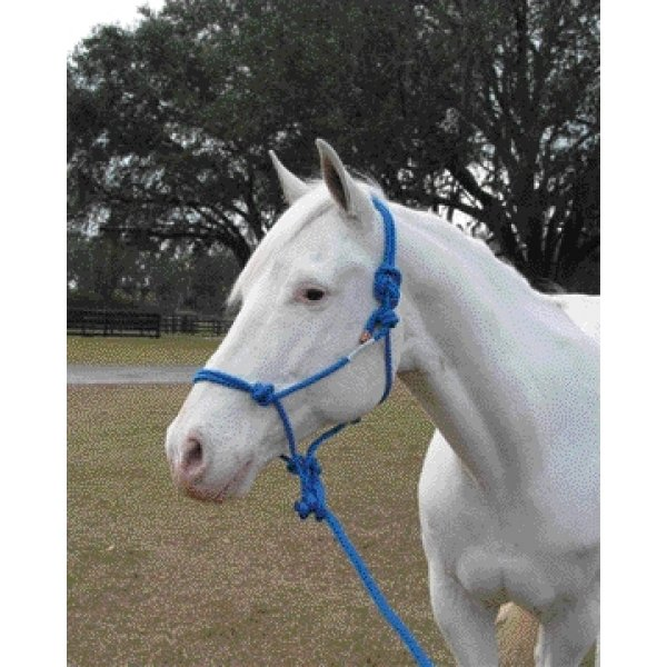 5/16 inch Knotted Style Rope Halter / Color (Blue) Best Price