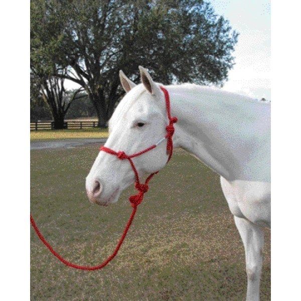 5/16 inch Knotted Style Rope Halter / Color (Red)