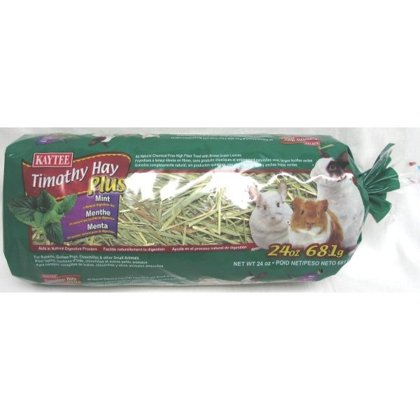 Timothy Hay Plus 24 oz. / Boost (Mint) Best Price